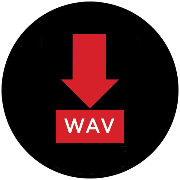 Descărcare WAV