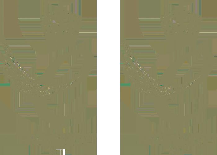 Премия Queens за предприятие 2021 и 2018 гг.